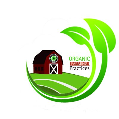 whole plant extract organic mitchell's medcinals healing pet organic topical salve ointment extract