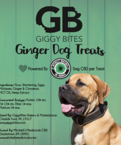 cbd dog treats local homemade raw dog cat
